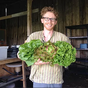 blue wheelbarrow farm greens vegetables aaron armstrong