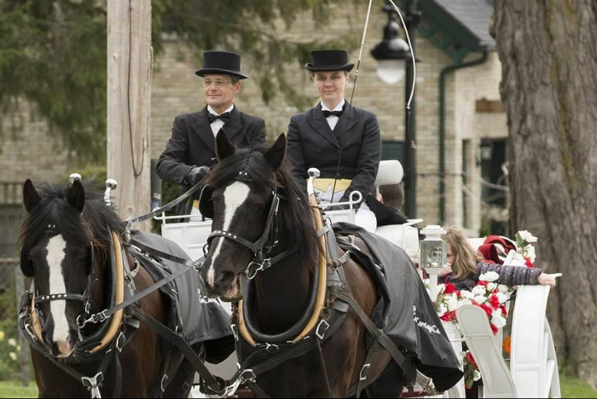 carriage horse wine tours