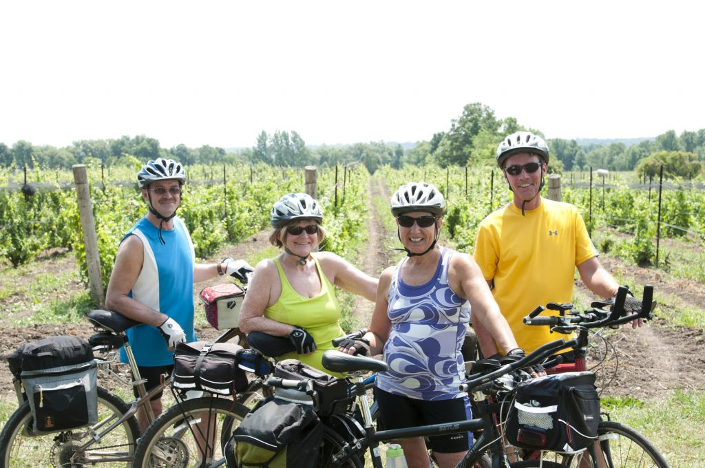 Cycling in winery