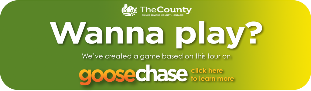 link to History Takes Flight goosechase game